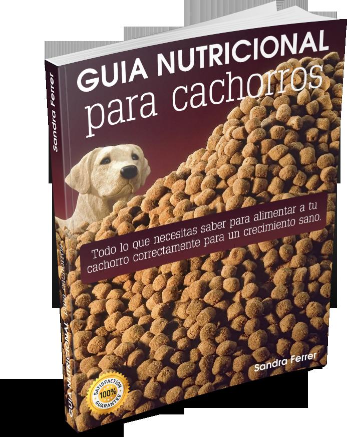 guía de nutrición para cachorros